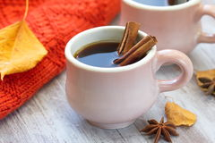 Two cups of coffee in autumn Royalty Free Stock Image