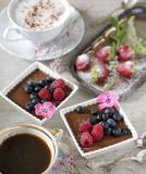 Two cups of coffee, chocolate desserts and strawberries, vintage cutlery royalty free stock photos
