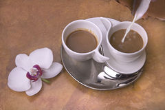 Two cups of coffee with milk Royalty Free Stock Image