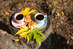 Two cups and cookies stand on a stump in the autumn park. Romantic break outdoors coffee Royalty Free Stock Photography