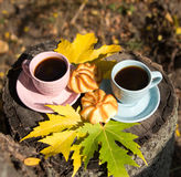 Two cups and cookies stand on a stump in the park. Romantic break outdoors coffee Stock Photography