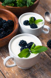 Two cups of creamy yogurt with blackberries Royalty Free Stock Photo