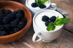 Two cups of creamy yogurt with blackberries Royalty Free Stock Photography