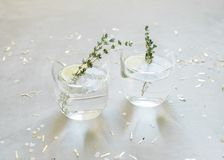 Two cups with a fancy cocktail stock image