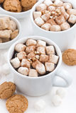 Two cups of flavored cocoa with marshmallow, top view Royalty Free Stock Images