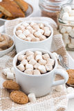 Two cups of flavored cocoa with marshmallow Royalty Free Stock Photos