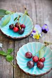 Two cups with flowers and cherry Stock Image