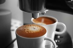 Two cups with fresh espresso in new coffee maker. Closeup royalty free stock image