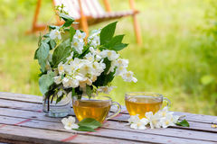 Two cups of green tea on a table in the garden. Two cups of green tea with jasmine flowers on grunge wooden table in the garden stock photography