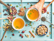 Two cups of healthy herbal tea with mint, cinnamon, dried rose and camomile flowers in different spoons, woman's hand Royalty Free Stock Photos