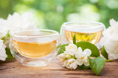 Two cups of healthy jasmine tea. Stock Photography