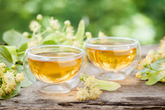 Two cups of healthy linden tea. Stock Photos