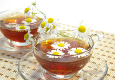 Two cups of herbal tea Stock Photography