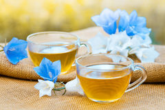 Two cups of herbal tea. On grunge wooden table, decorated with harebell flowers in the garden Stock Photo