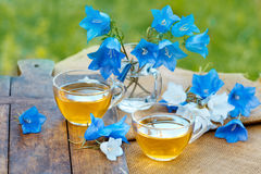 Two cups of herbal tea. On grunge wooden table, decorated with harebell flowers in the garden royalty free stock photo