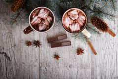Two cups of sweet cocoa with marshmallows next to a pine branch on a table background. Winter hot chocolate. royalty free stock photo