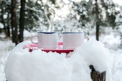 Two cups of hot drink on a plate in a snowy forest. Two cups of hot drink on a red plate in a snowy forest Royalty Free Stock Images