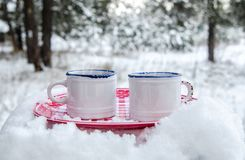 Two cups of hot drink on a plate in a snowy forest. Two cups of hot drink on a red plate in a snowy forest Stock Images