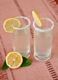 Two cups of lemonade and lemon Stock Images