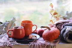 Free Two Cups Of Coffee, Meringues, Pumpkins, Apples, Leaves, Plaid On The Background Of The Window Stock Photos - 157403813