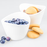 Two cups of pudding with blueberries and biscuit Royalty Free Stock Images