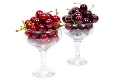 Two cups of ripe cherry Stock Images