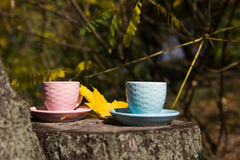 Two cups standing on a stump in the park. Coffee break outdoors Royalty Free Stock Photography