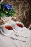 Two cups of tea Royalty Free Stock Photo