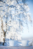 Two cups of tea on winter background Stock Images