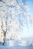 Two cups of tea on winter background Stock Image