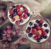 Two Cups Of Yogurt With Berries Stock Photos