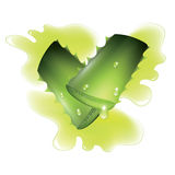 Two cut pieces of aloe vera plants. Royalty Free Stock Photos