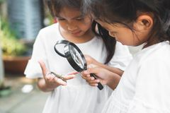 Two cute asian child girls using magnifying glass watching and learning on grasshopper that stick on hand with curious and fun royalty free stock photo