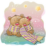Two Cute Bears Stock Images