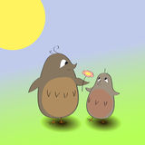 Two cute birdies with a flower. Vector two cute grey-brown birdies with a flower Stock Photos