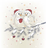 Two cute birds with Christmas hats Stock Photography