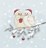 Two cute birds with Christmas hats Stock Photos