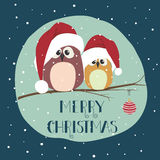 Two cute birds in santa clothes sitting on the branch Stock Photo