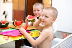 Two cute boys eating watermelon. Two cute boys sitting in garden and eating watermelon, enjoying sunny day Royalty Free Stock Images