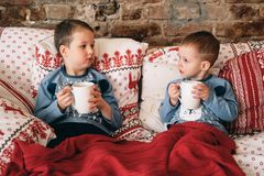 Two cute brothers having hot chocolate together in their bed. With a red blanket stock image