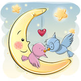 Two Cute Cartoon Birds Royalty Free Stock Photography