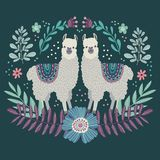 Two cute cartoon Llamas. Hand drawing flat doodles vector. Illustration royalty free illustration