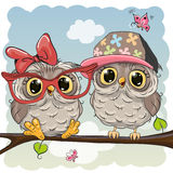 Two cute Cartoon Owls Stock Photography