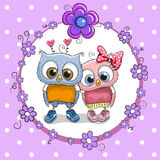 Two cute Cartoon Owls Stock Photos