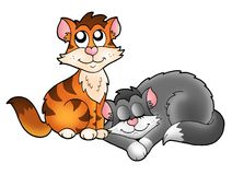Two cute cats. Color illustration Royalty Free Stock Photo