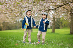 Two cute children, boy brothers, walking in a spring cherry blos Stock Photos