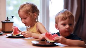 Two cute children brother and sister eating a watermelon. Girl laughing and looking to the boy, he making funny face. stock video footage