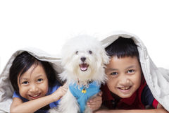 Two cute children having fun with dog Royalty Free Stock Photo