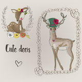 Two cute deers Stock Photo