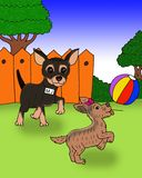 Two cute dog playing a ball cartoon royalty free illustration